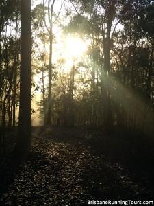 Sunrise Brisbane Running